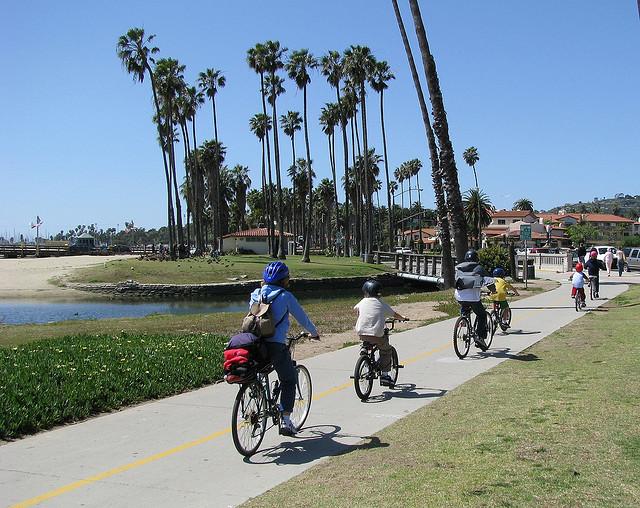 Telsa-Electric-bike-family