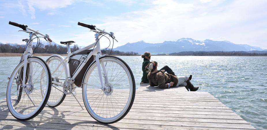 Telsa-Electric-bike