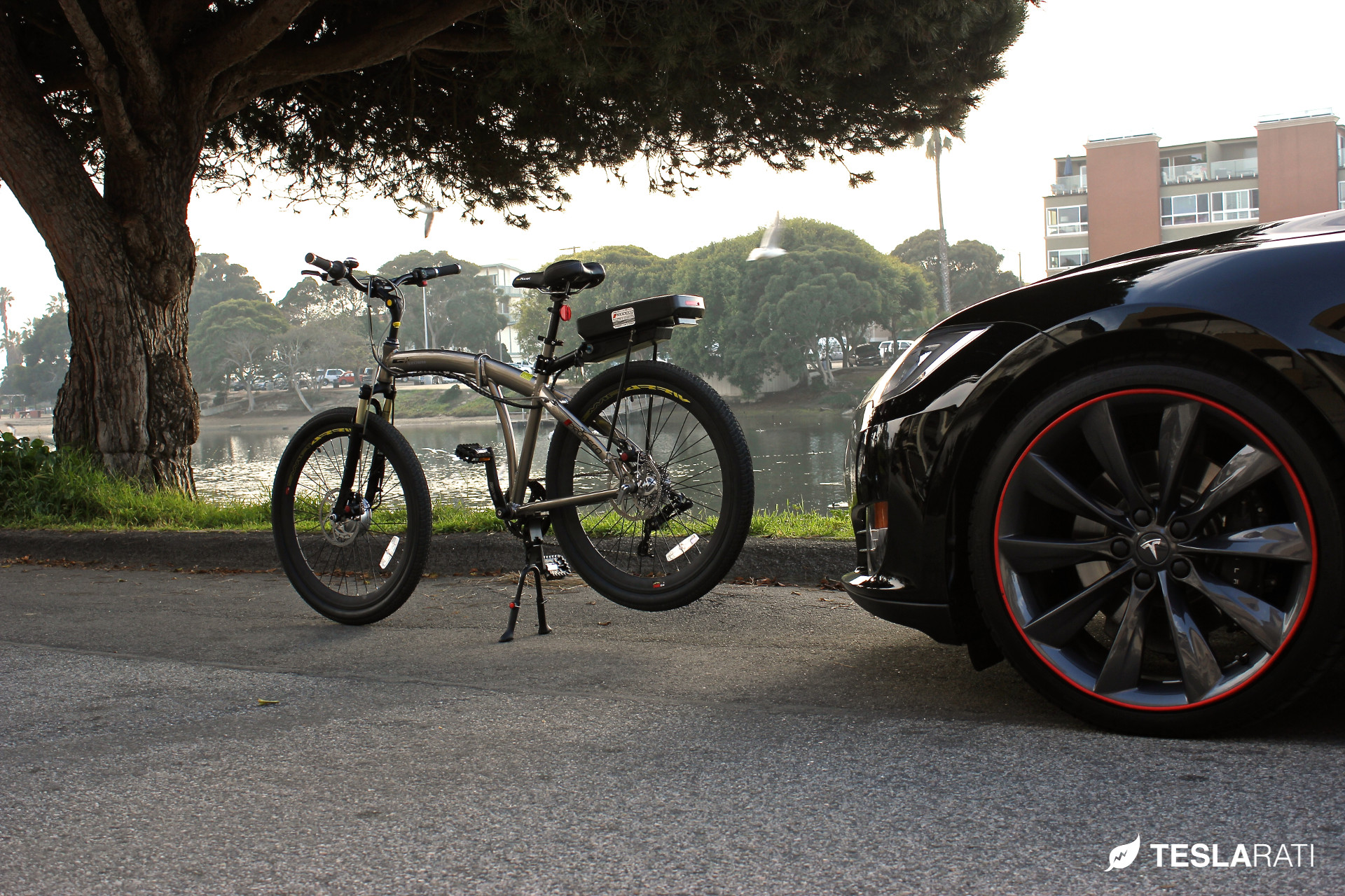 Tesla-Folding-Electric-Bike-Prodeco-12