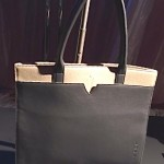 Tesla Branded Lifestyle Goods (Leather Tote)