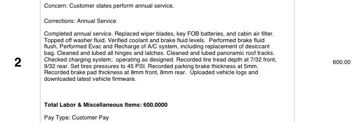 Tesla Annual Service details