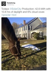 Solar Generation Tweet