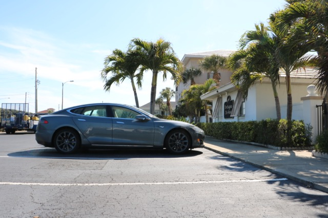 Tesla Model S and palm trees