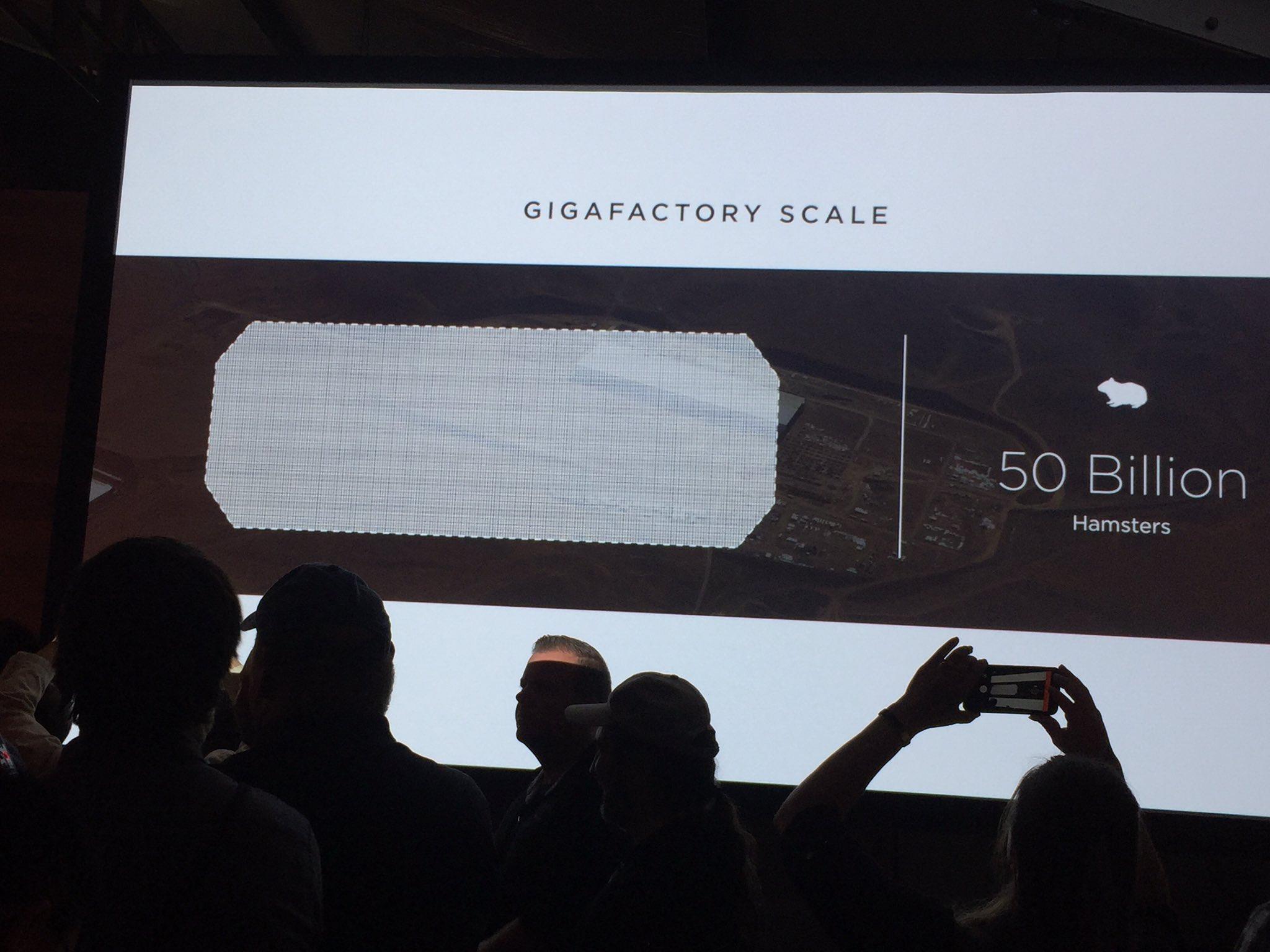 Gigafactory-50B-Hamsters