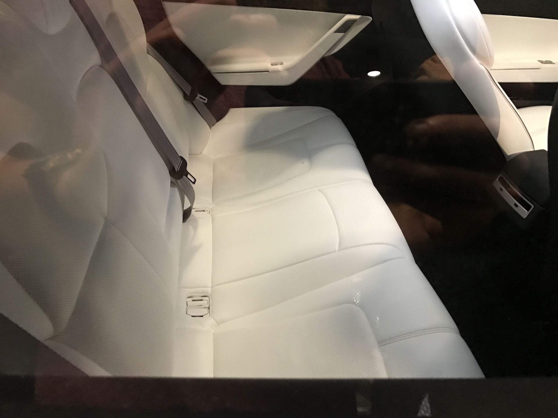 silver-tesla-model-3-rear-seat-employee-party