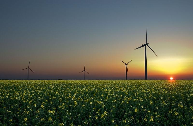 wind-farm-energy