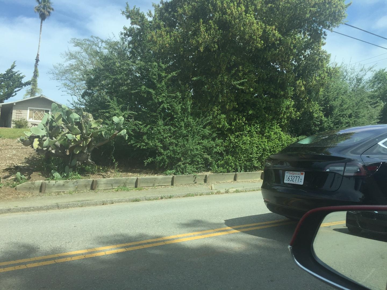 Black-Tesla-Model-3-release-candidate-2