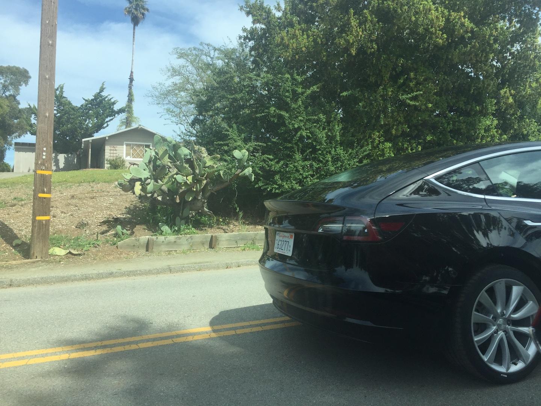 Black-Tesla-Model-3-release-candidate-4