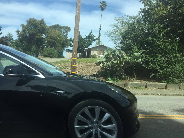 Black-Tesla-Model-3-release-candidate-front-2