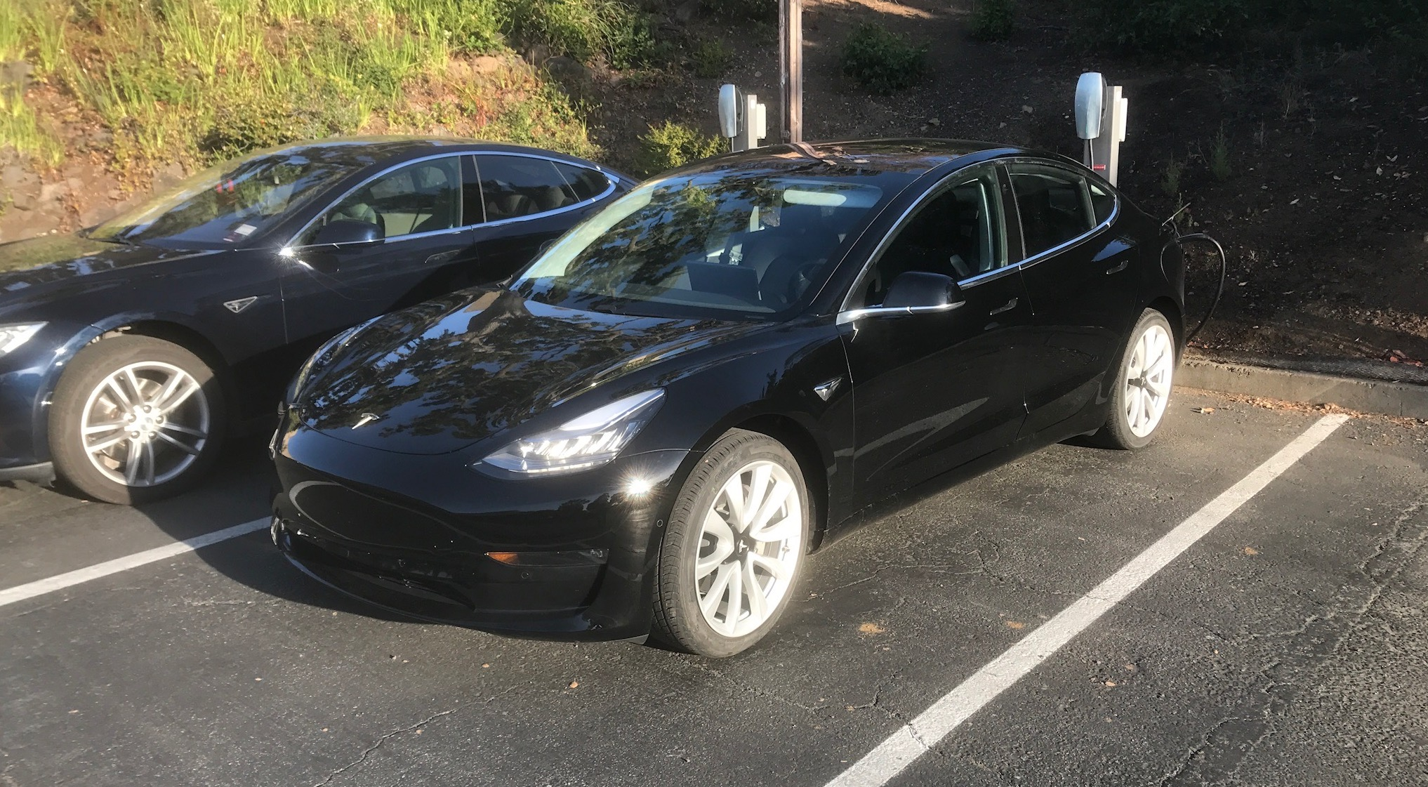Is this Elon Musk's personal Tesla Model 3 we just spotted
