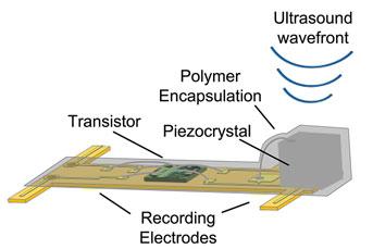 diagram-uc-berkeley-sensor-nerves