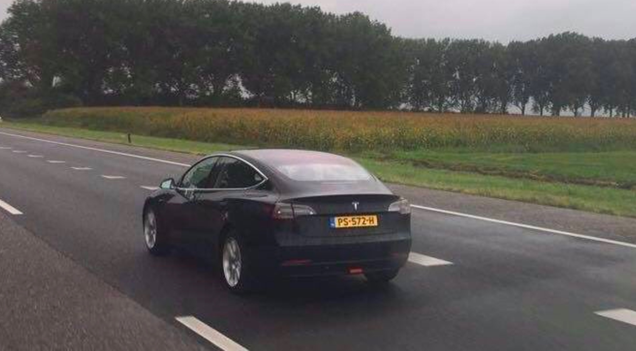 Image result for Tesla Model S netherlands