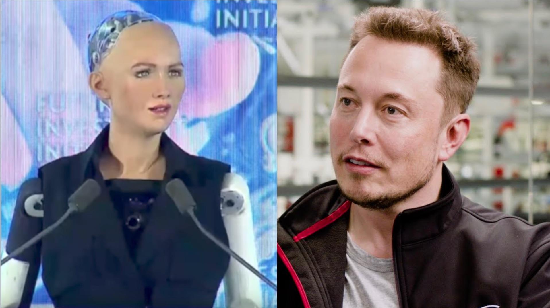 sophia-ai-robot-vs-elon-musk