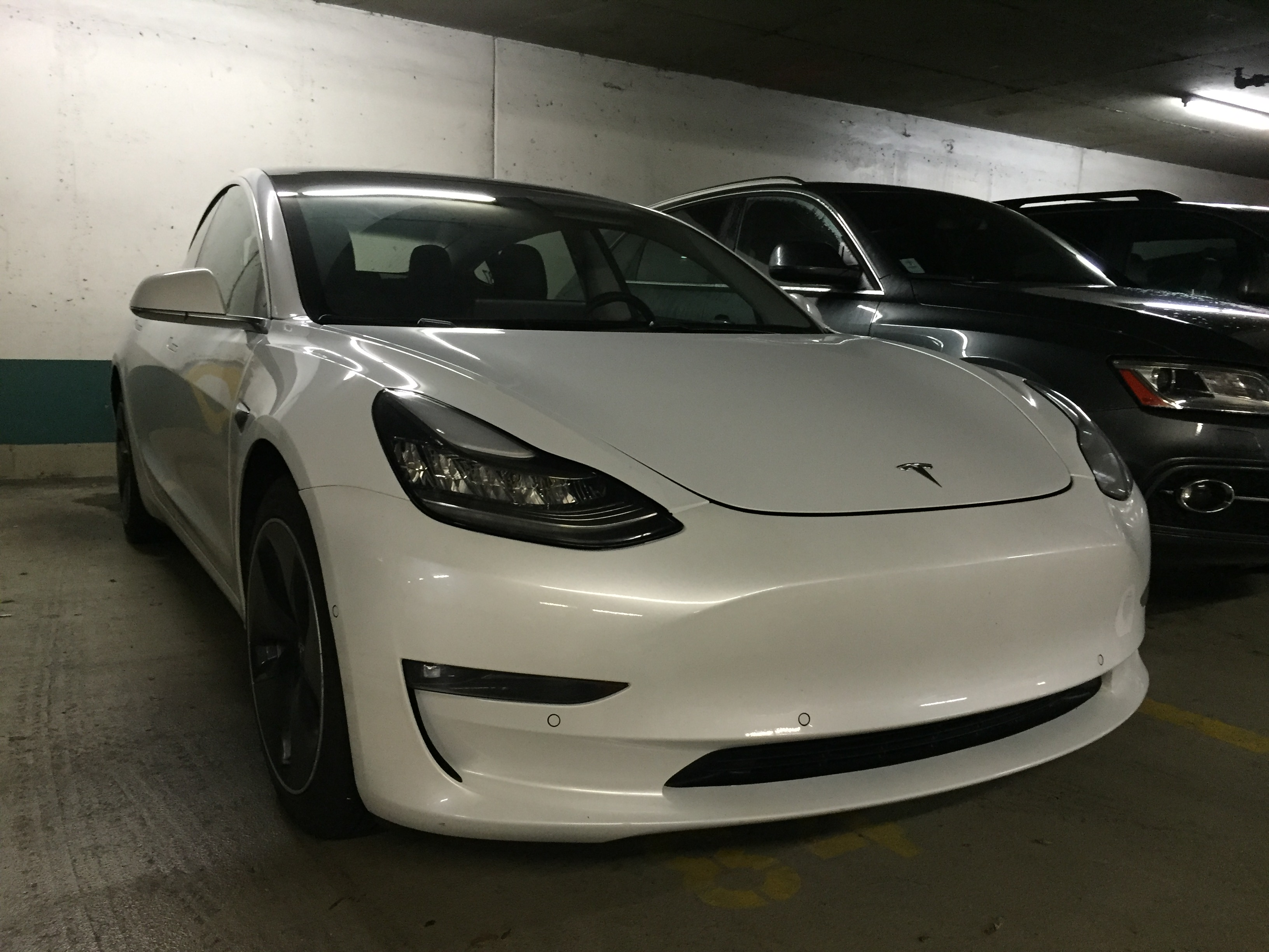 Tesla Supercharger Map 2017 >> Tesla Model 3 with manufacturer plate makes its way to Canada