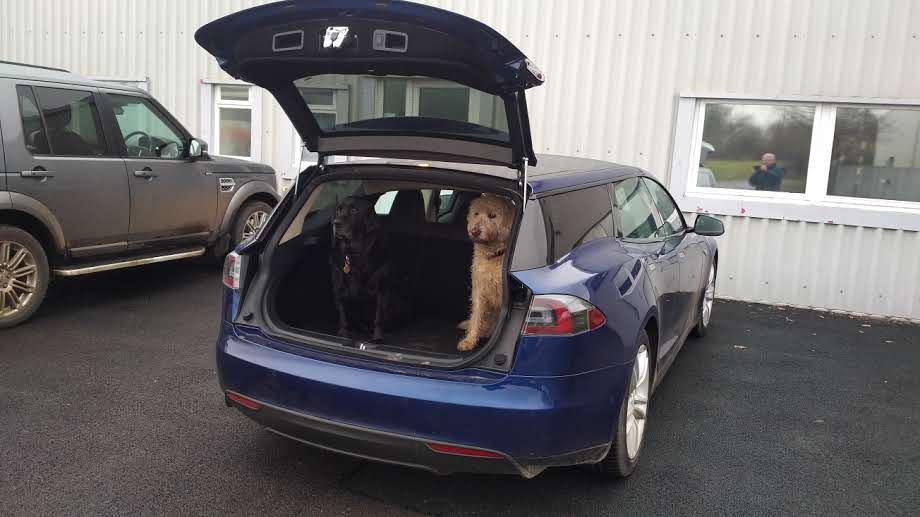 questnorfolk-model-s-wagon-shooting-brake-dogs-2