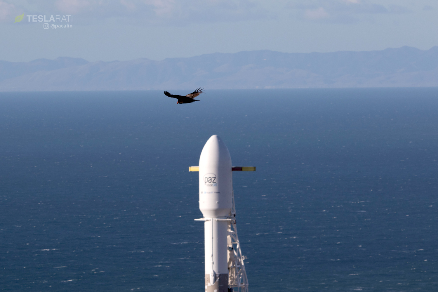 Falcon 9 and PAZ with vulture (Pauline Acalin)