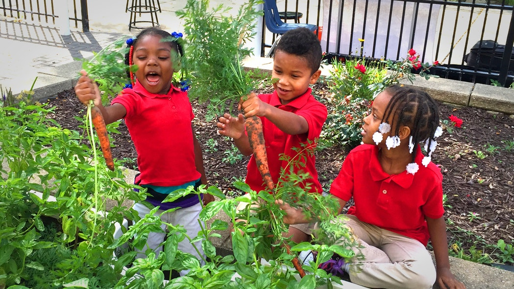 Kimbal Musk learning garden 4 [Credit: Big Green]