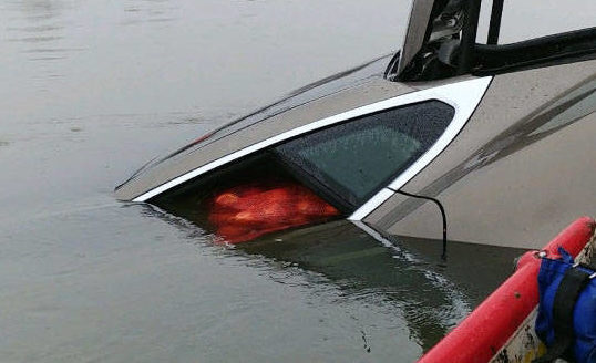Stolen Tesla Model S onions [Credit: The Langley Times/Facebook]