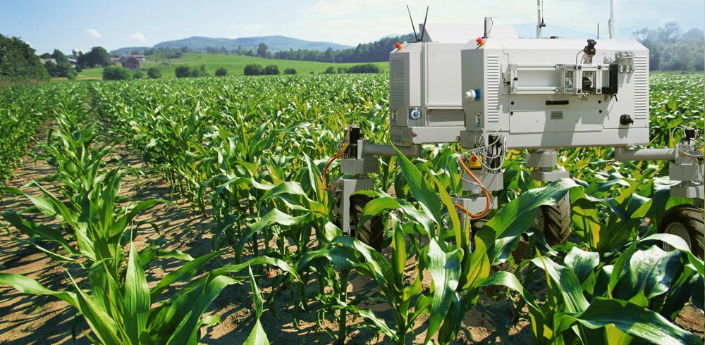 AI Robots Agriculture [[Credit: Deepfield Robotics]]