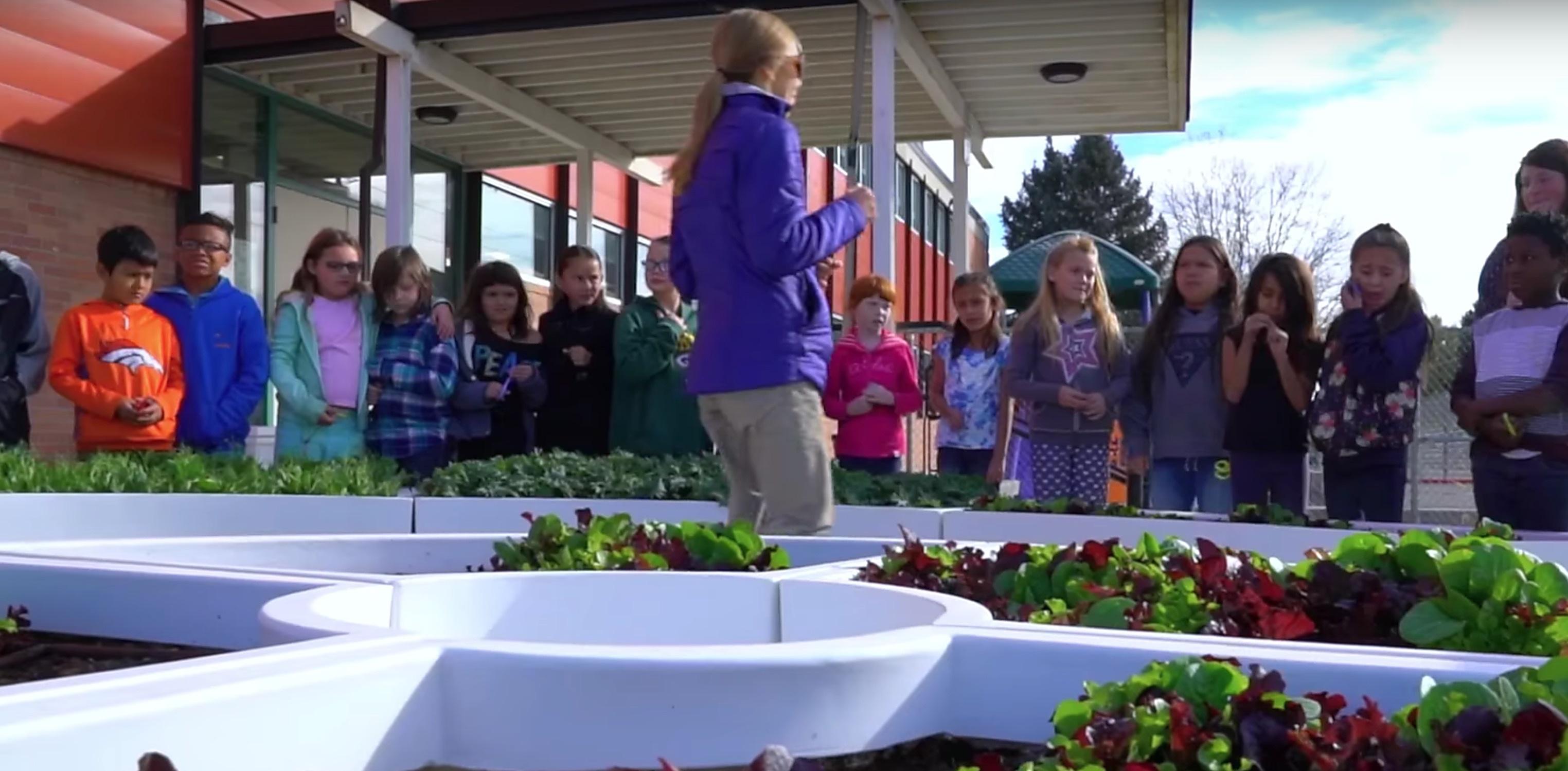 kimbal-musk-learning-gardens-school