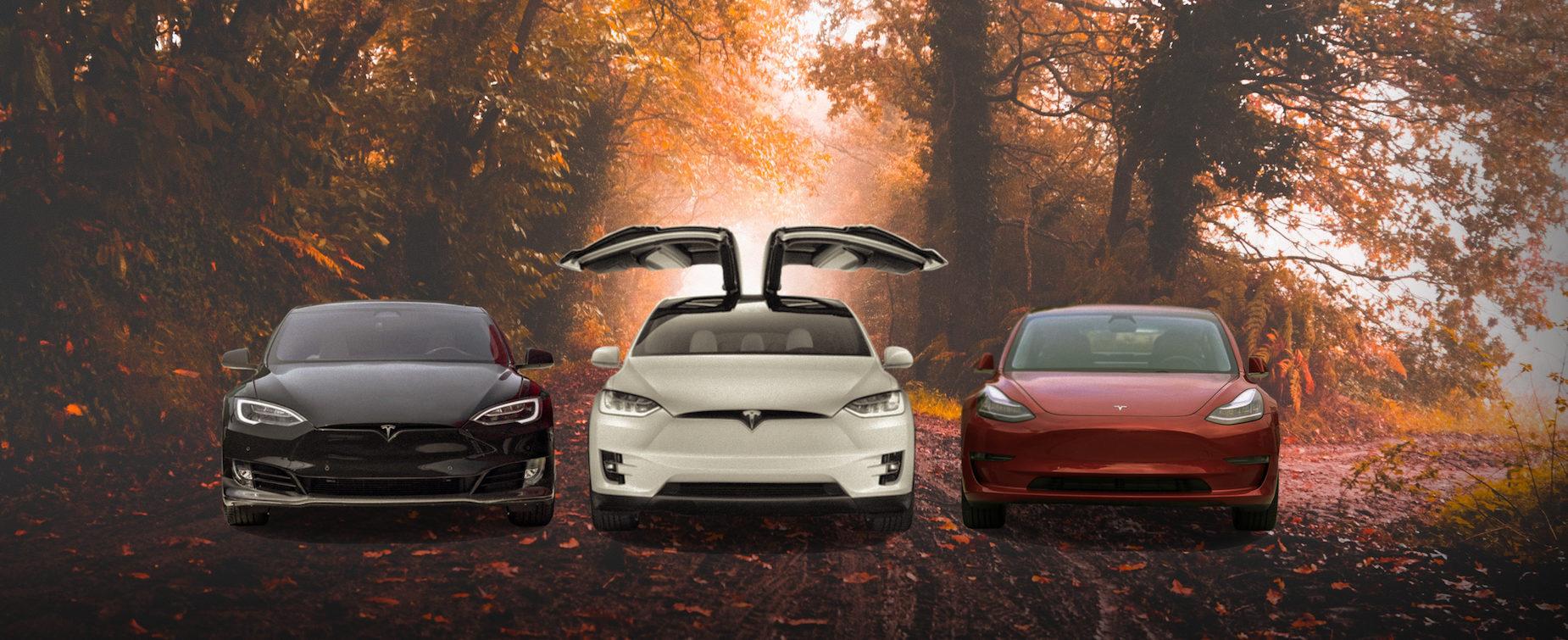 Autumn-Scene-with-3-Tesla