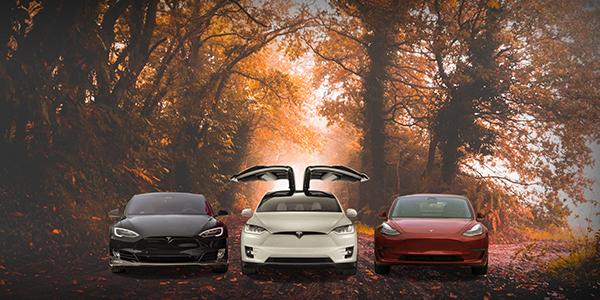 Tesla raffle via Climate XChange