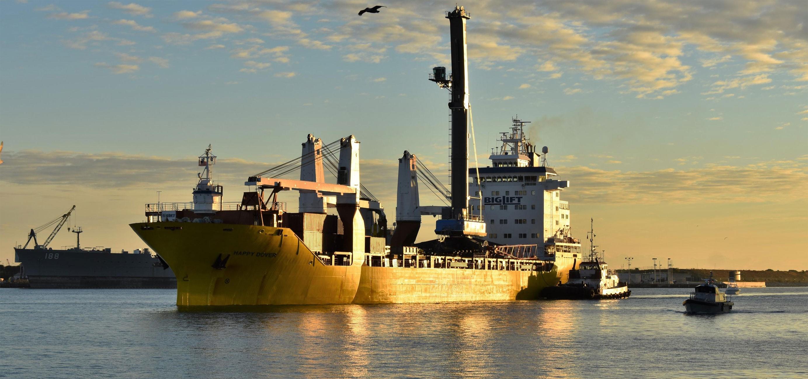 Liebherr LHM 600 crane Port Canaveral 011819 (Port Canaveral) 1 crop(c) 3