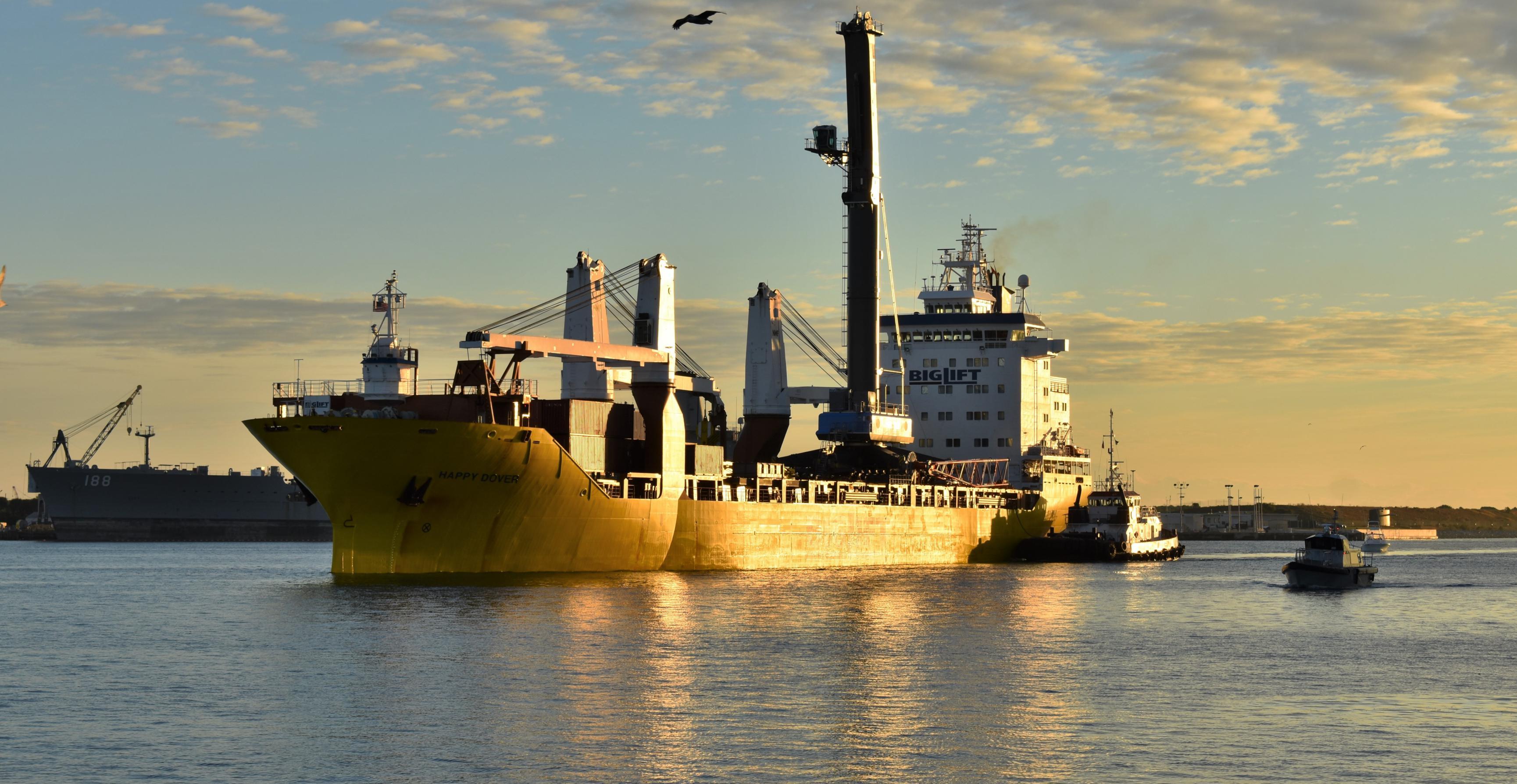 Liebherr LHM 600 crane Port Canaveral 011819 (Port Canaveral) 1 crop(c)
