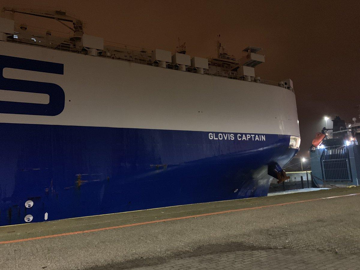 glovis-captain-model-3-1