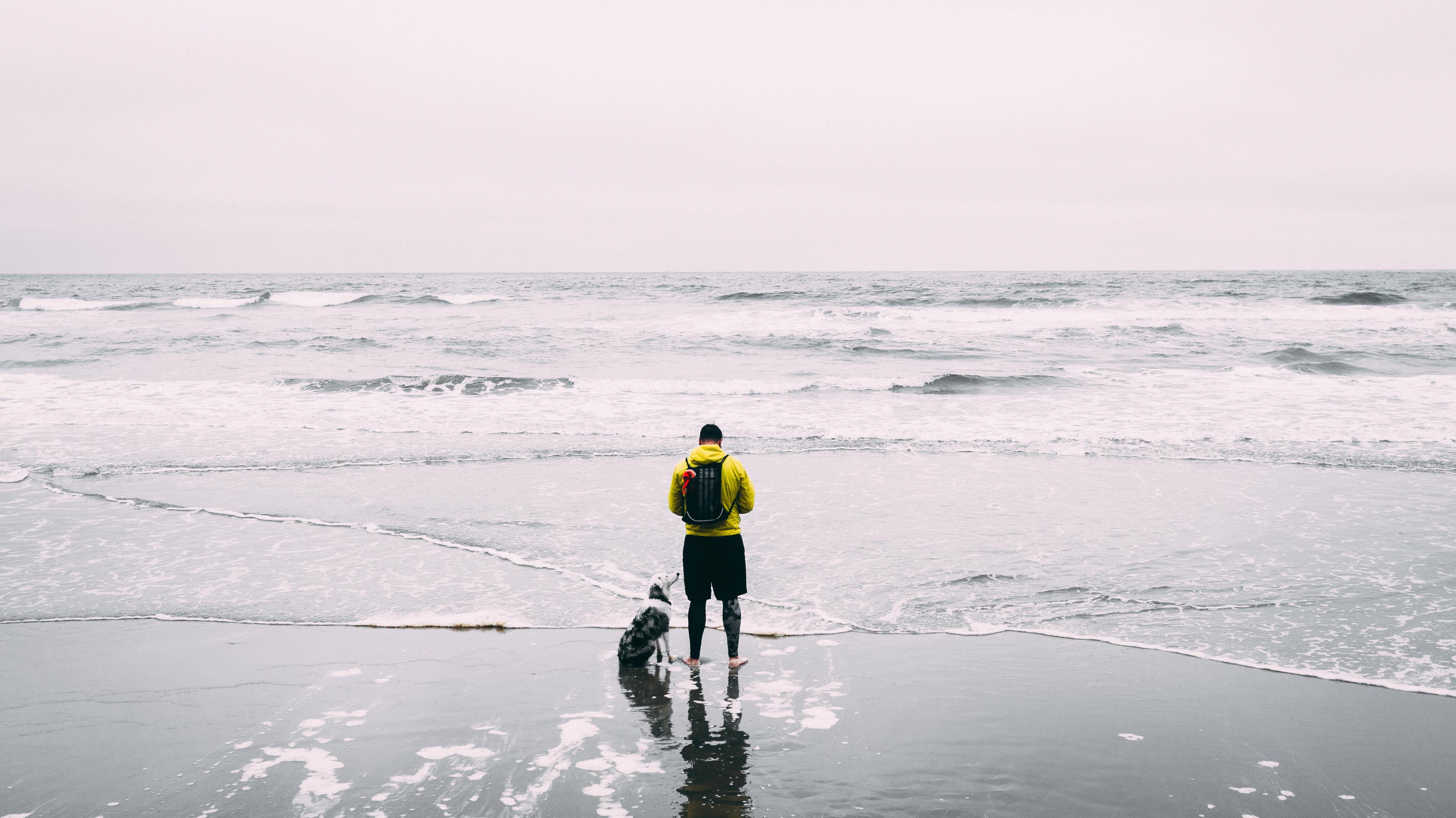beach-clean-up-arash-malek
