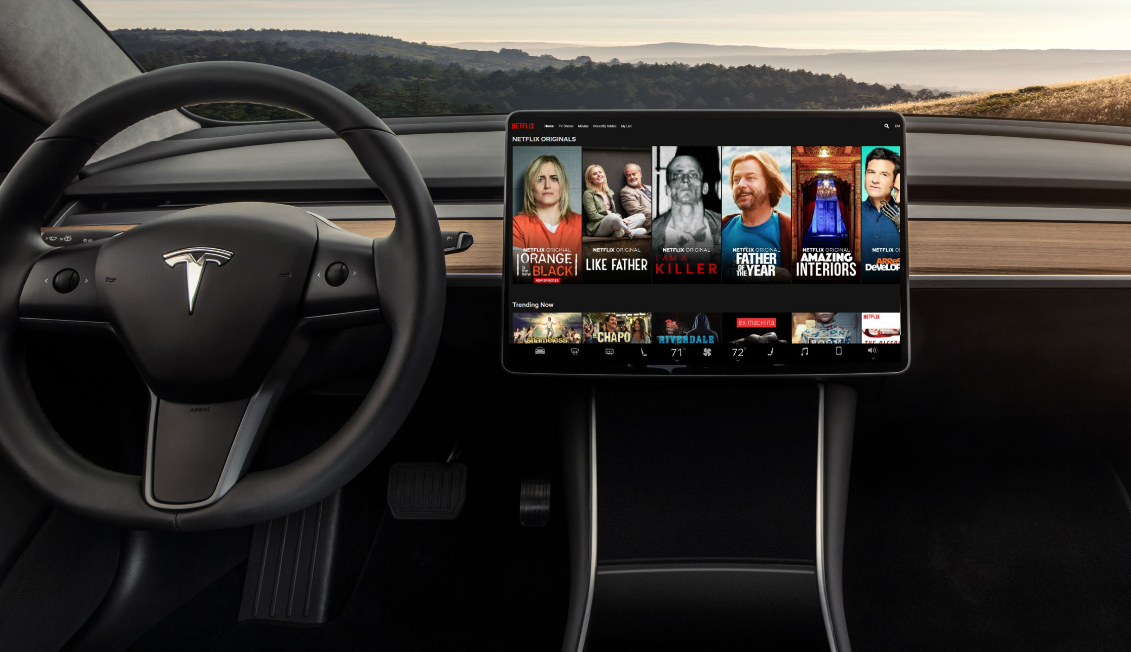 tesla-video-streaming-netflix