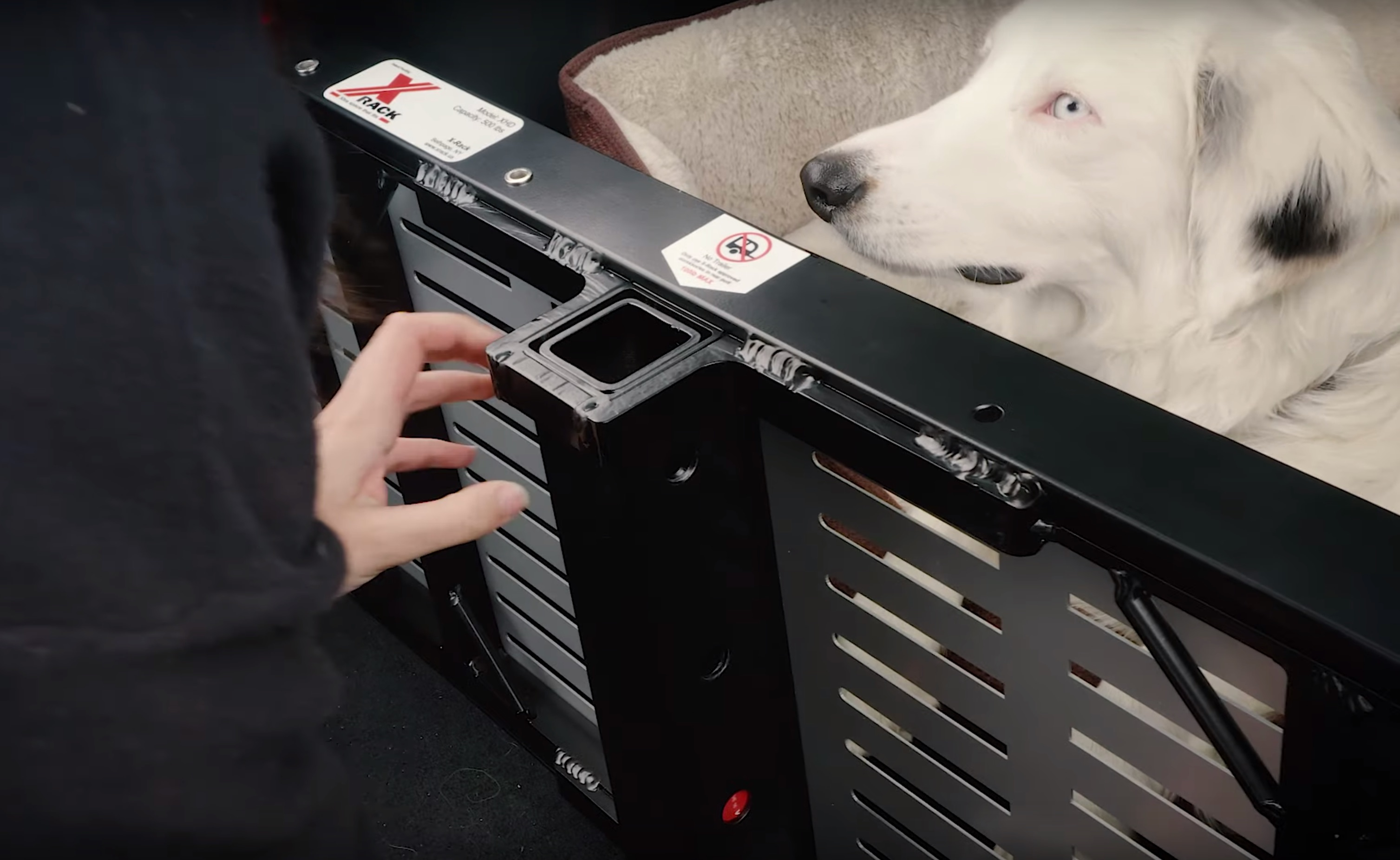 tesla-model-x-rack-trunk-leila-dog