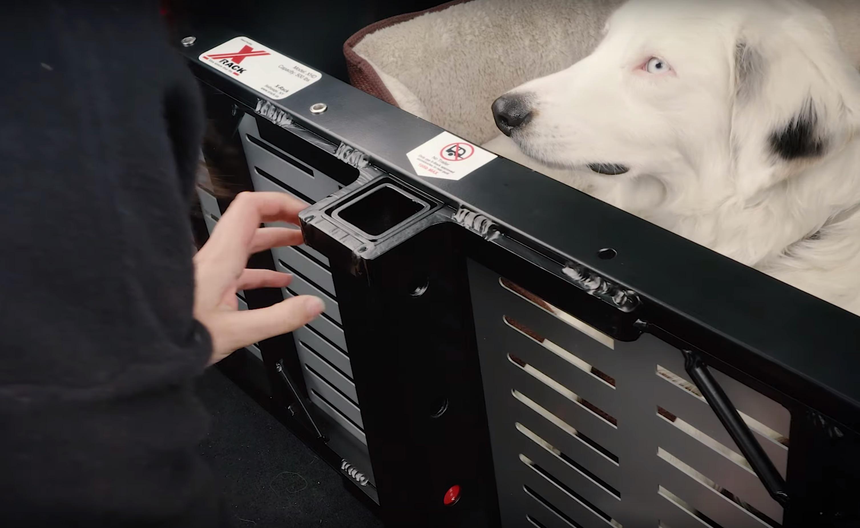 tesla-model-x-rack-trunk-leila-dog