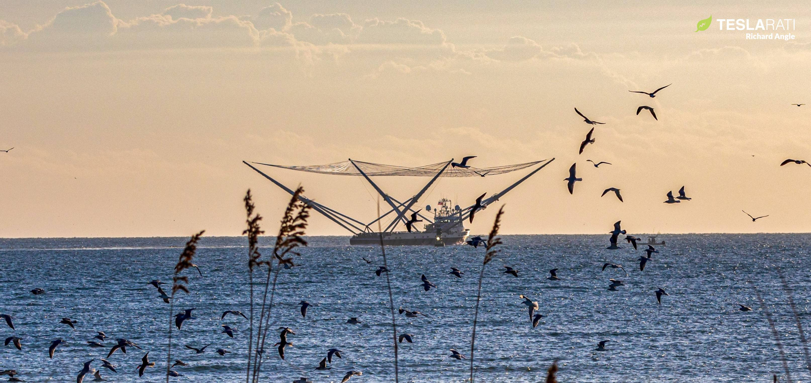 GO Ms Chief sea trials 102319 (Richard Angle – Teslarati) (6) crop (c)