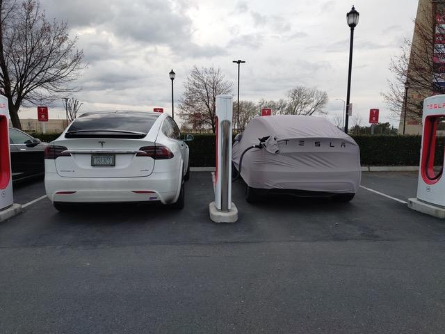 Tesla Model Y next to a Tesla Model X