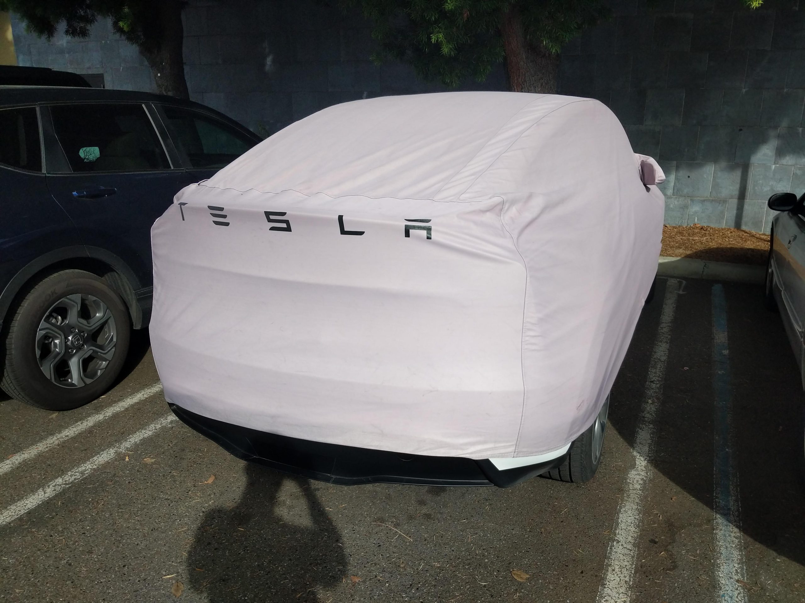 Tesla Model Y spotted in downtown Mountain View CA
