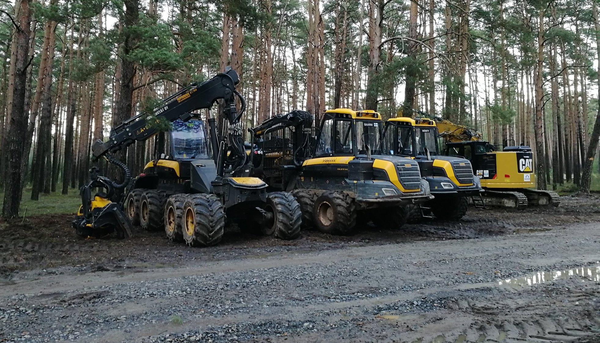 gf4-tree-cutting