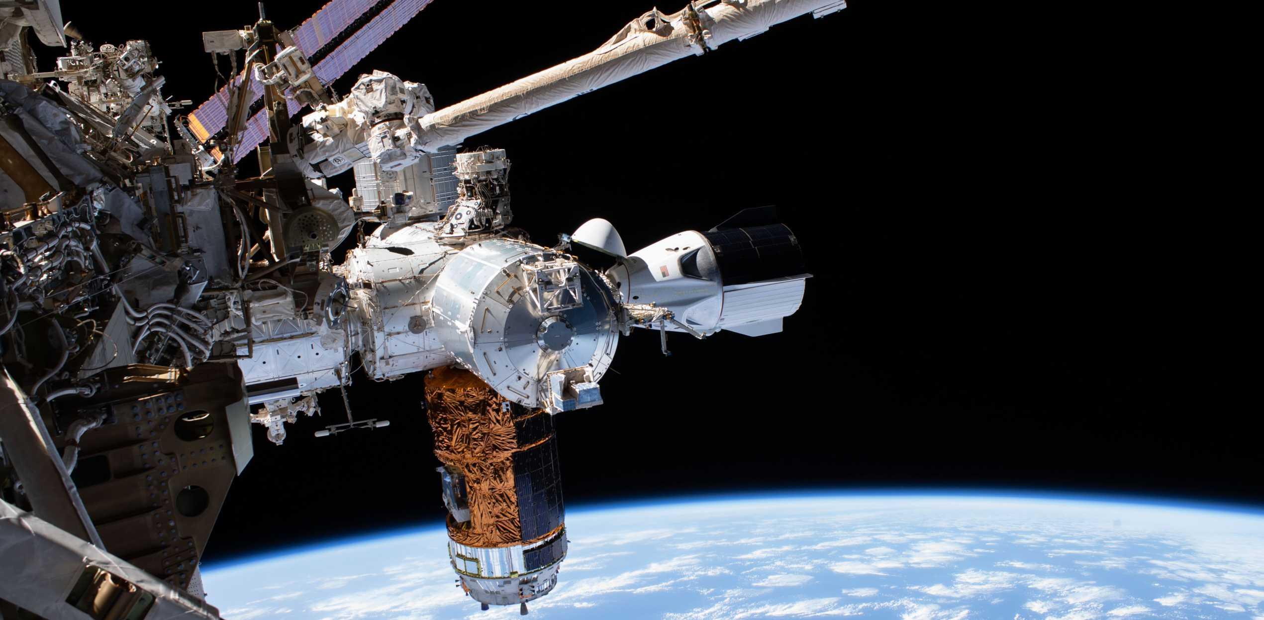 SpaceX Crew Dragon C206 Demo-2 ISS spacewalk 070120 (NASA) 1 crop 2 (c)