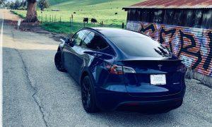 Tesla Model Y (Photo: Teslarati)
