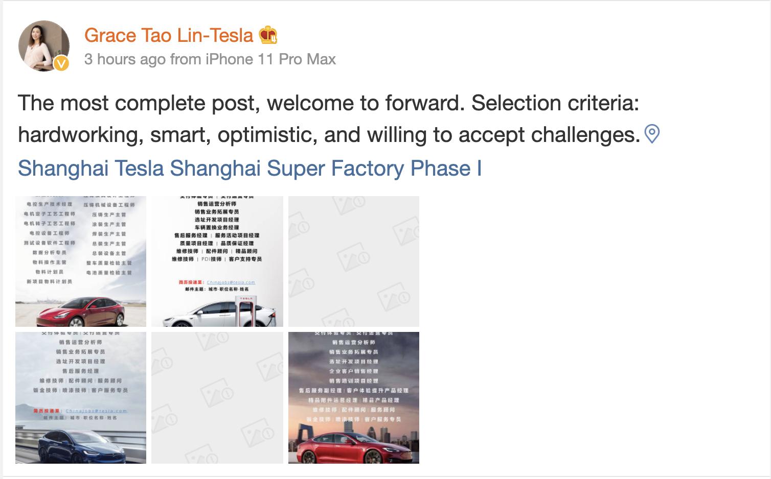 tesla-grace-tao-weibo-job-postings-china