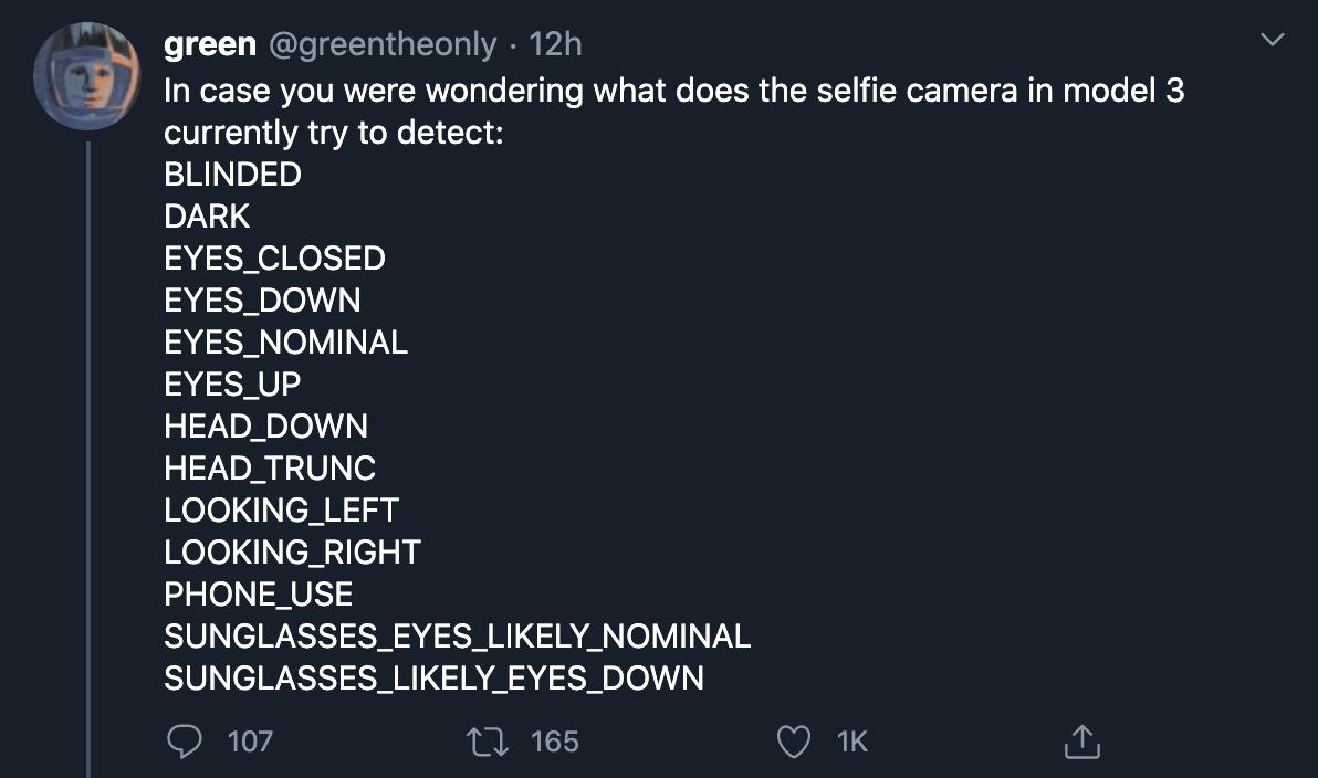 tesla-cabin-camera-codes-detection