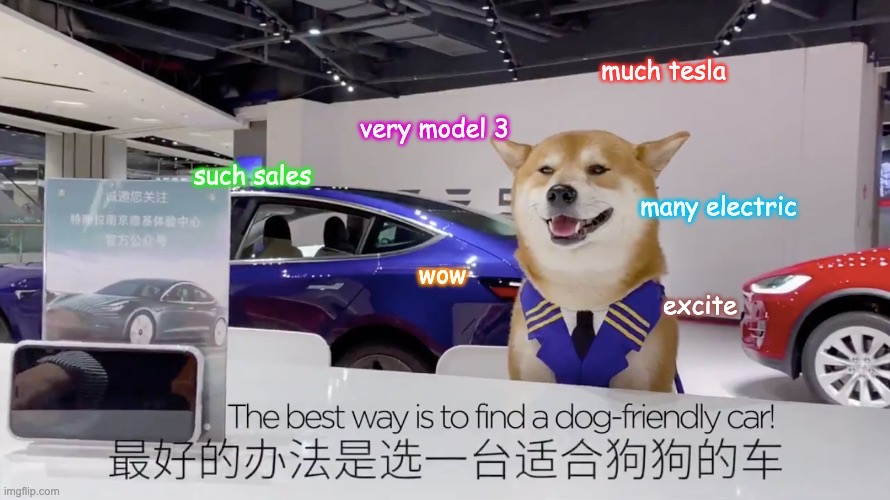 tesla-china-model-3-ad-doge-meme