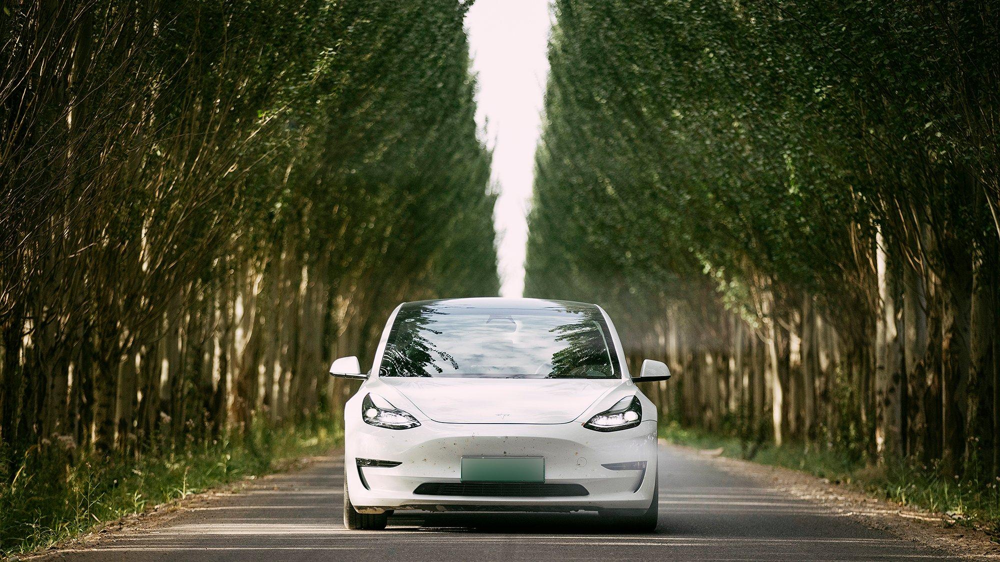 Tesla-model-3-LFP-battery-option